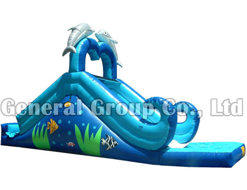 GWS-63 Dolphin Water Slide