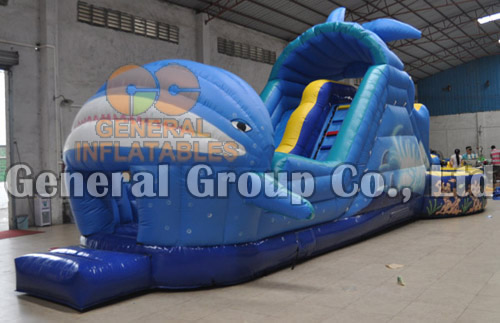 GW-79 Shark water slide